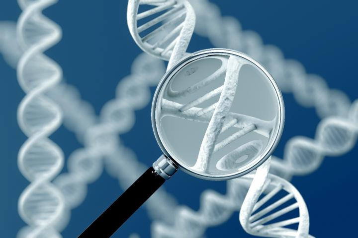 The genetics of Williams Syndrome