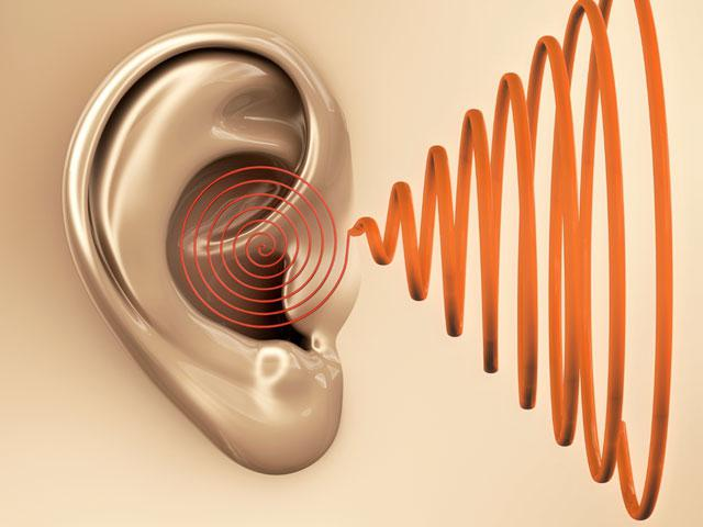 What Do Tinnitus Sufferers Have in Common?
