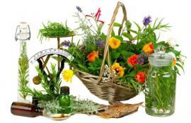 Garden Medicine