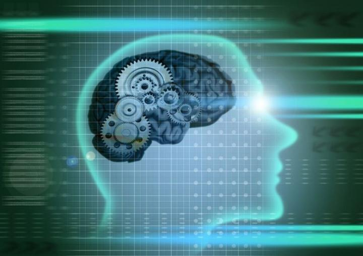 7 Simple Actions To Improving Your Memory And Concentration