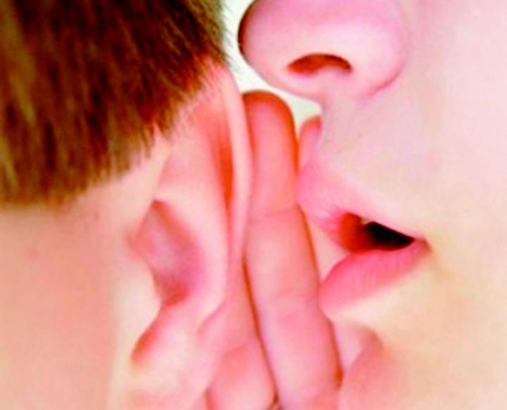 Central Auditory Perception and Hearing Loss