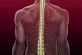 Spinal Injury Medicine